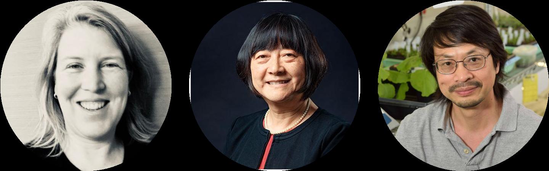 Drs. Emily Bernhardt, Xinnian Dong and Sheng-Yang He